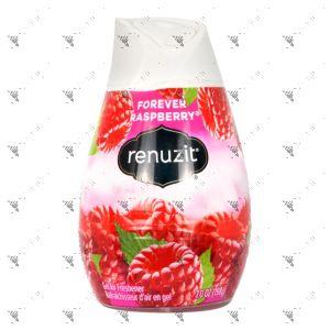 Renuzit Aroma Air Freshener Gel 198g Raspberry