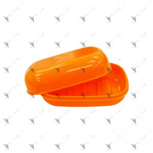 Plastic Travel Soap Box (Assorted Colors)