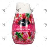 Renuzit Aroma Air Freshener Gel 198g Holly Berry